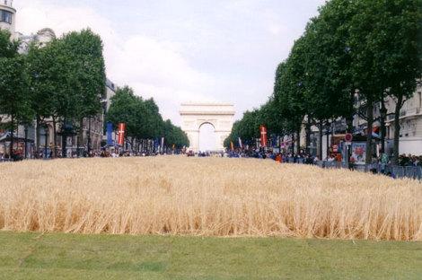 Champselysees